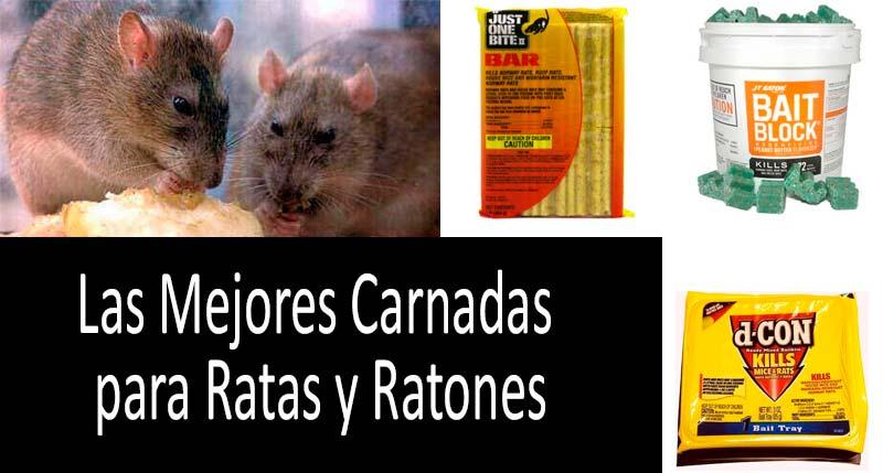 Las mejores carnadas para ratas y ratones: foto