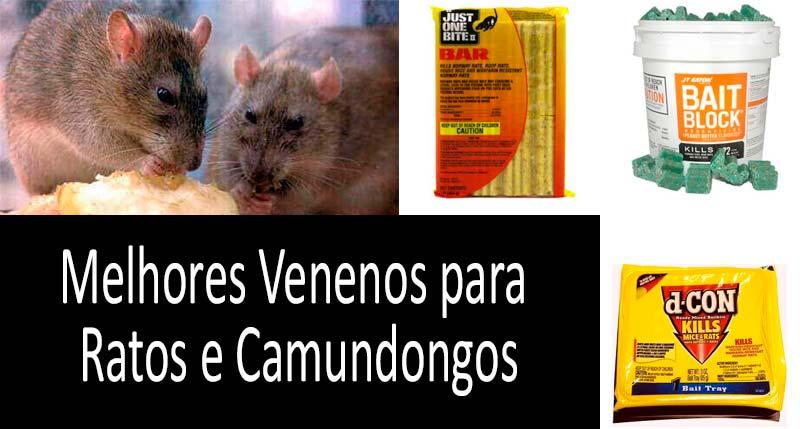 Matando ratos e camundongos: Veja mais