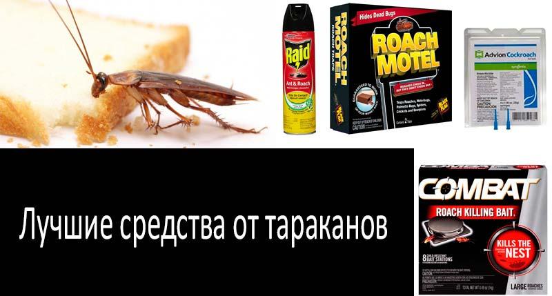 12 лучших уничтожителей тараканов: умрите, чудовищные создания!