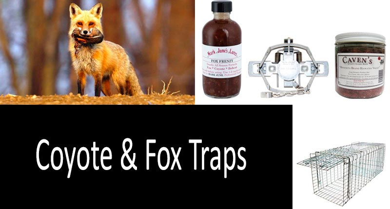 Coyote & Fox Traps: view more