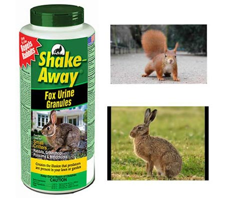 Shake Away Fox Urine Granules: photo