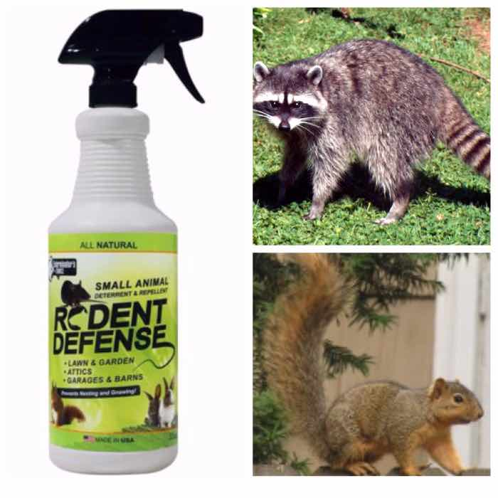 Rodent Defense Natural Spray: photo