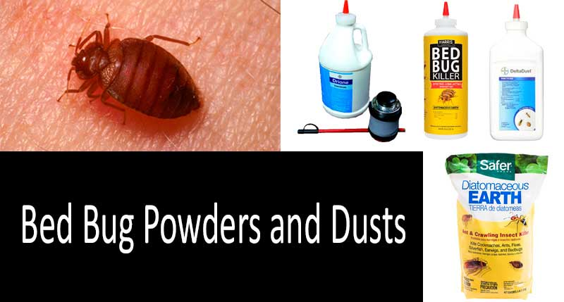 best bed bug powders and dusts