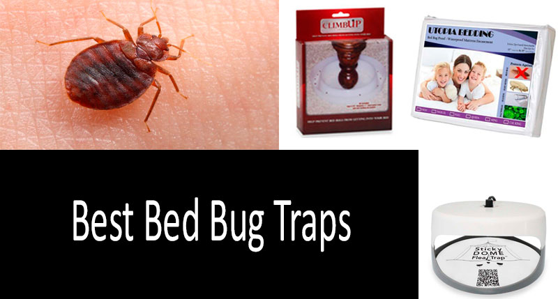 Bed Bug Traps [UPDATED 2019] Buyer's Guide | Homemade vs Ready Traps | Comparative Review