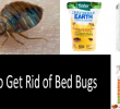 How to Get Rid of Bed Bugs Fast: Scientifically Approved Ways and Products