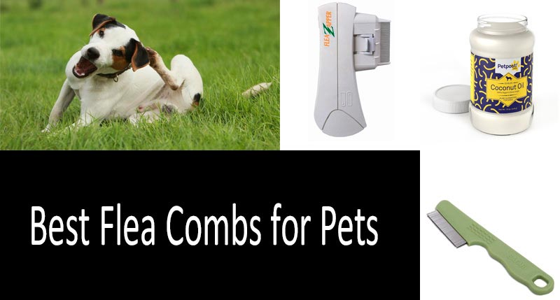 Flea Combs For Pets: photo