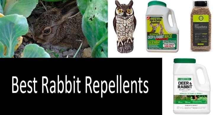 best rabbit repellents: photo