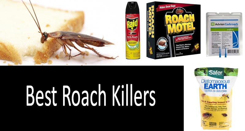 Top 15 Best Roach Killers In 2019 From 5 To 50 Buyers Guide
