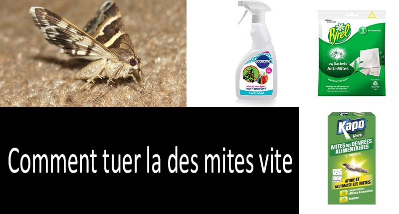 Comment tuer la des mites vite