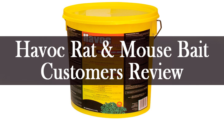 Havoc Rat & Mouse Bait Review min: view more