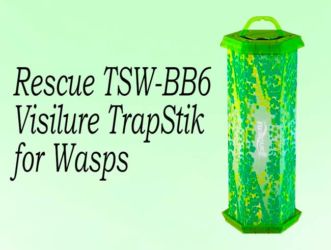 Rescue TSW-BB6 Visilure TrapStik for Wasps