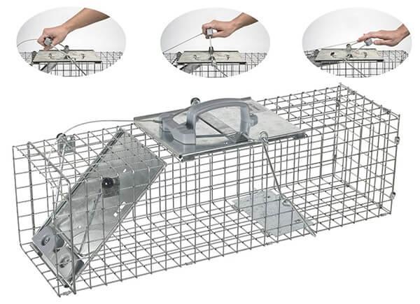 ловушка для кроликов: фото