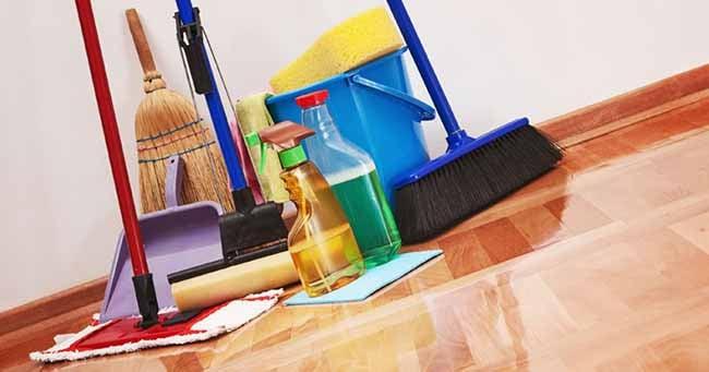 Советы по уничтожению муравьев: как избавиться от муравьев в квартире своими руками