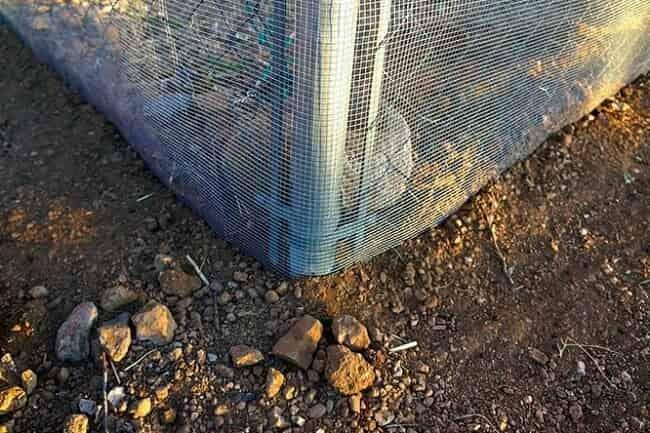 самодельные ограждения от змей: фото