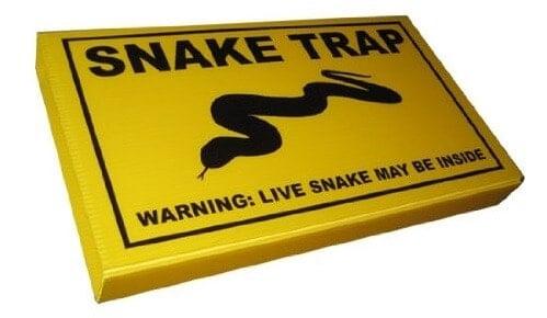 клейкая ловушка для змей: фото