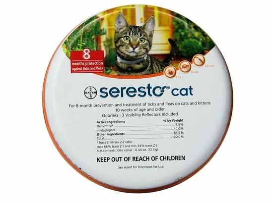 Cat flea treatment best