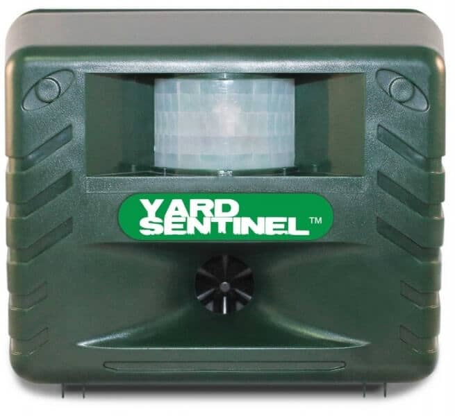 Yard Sentinel Electronic Repeller Review: How to Get Rid of Pests without Poisons and Traps?