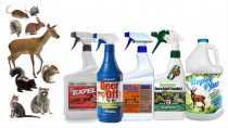 A Review of Squirrels, Rats, Rabbits, Raccoons and other Small Animals and Rodents Deterrents and Repellent Sprays