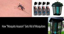 "Flowtron Electronic Insect & Mosquito Killer Review: How ""Mosquito Assassin"" Gets Rid of Mosquitoes"