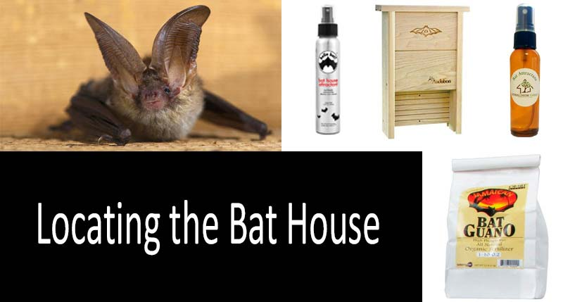 BAT SCENT.1 bottle.BRING BATS to your HOUSE. BAT  ATTRACT attraction for Bats